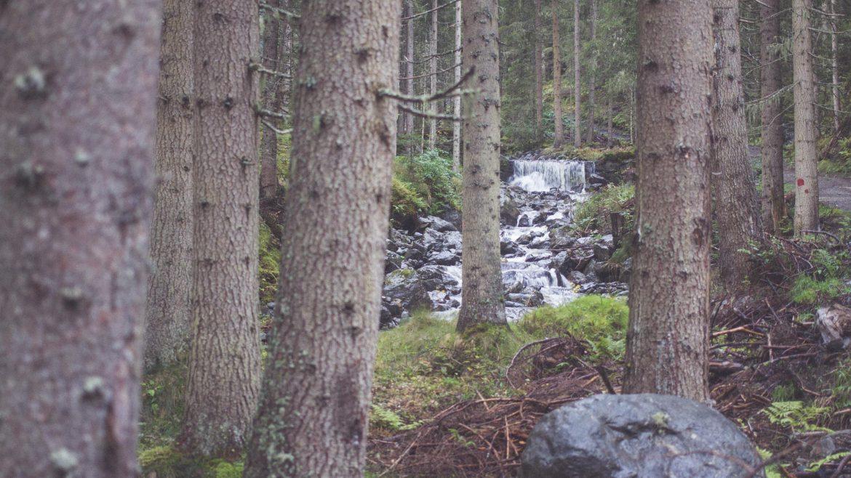 Der Wasserweg Leisnitz in St. Margarethen