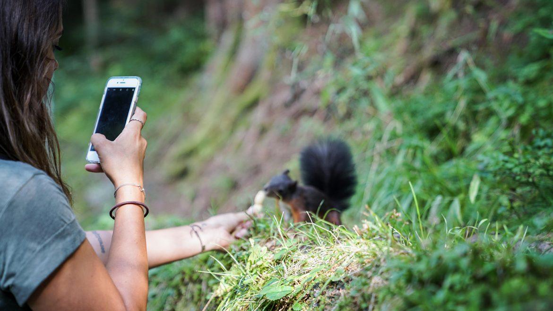 Nina füttert die zahmen Eichhörnchen