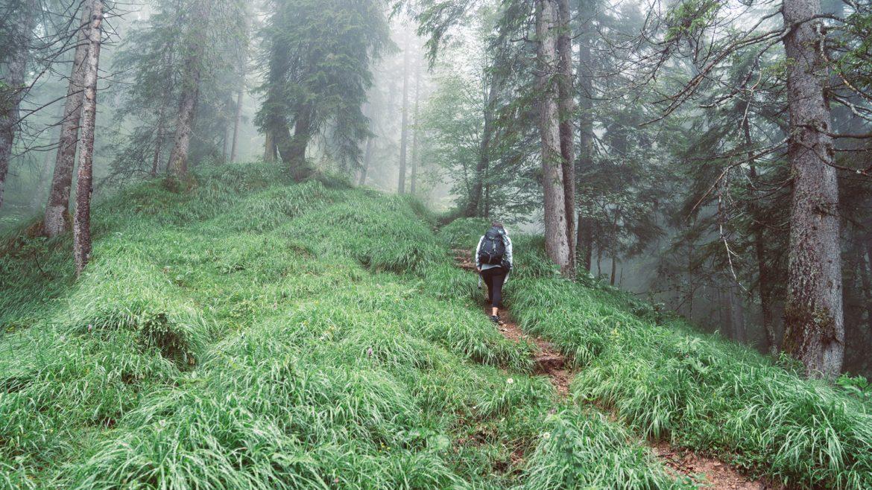 Wanderung in Richtung Tödlingalm