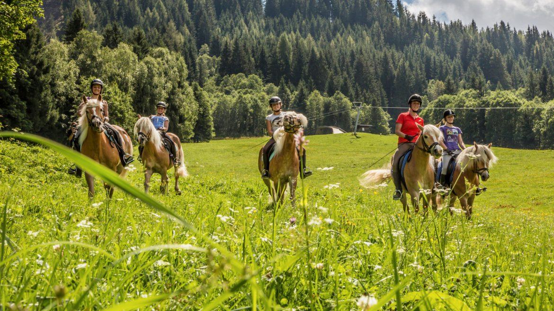 Jugendliche sitzen auf ihren stillstehenden Pferden auf einer grünen Wiese.