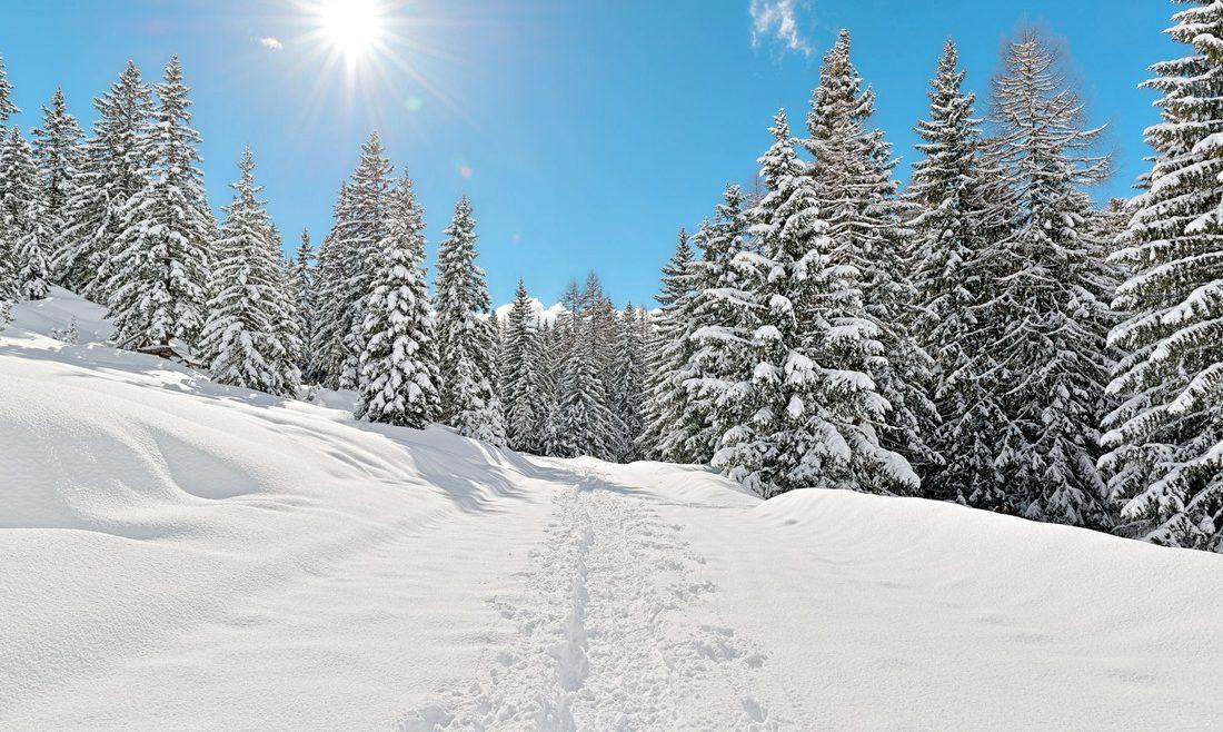 Winterlandschaft in der Region Fuschlsee