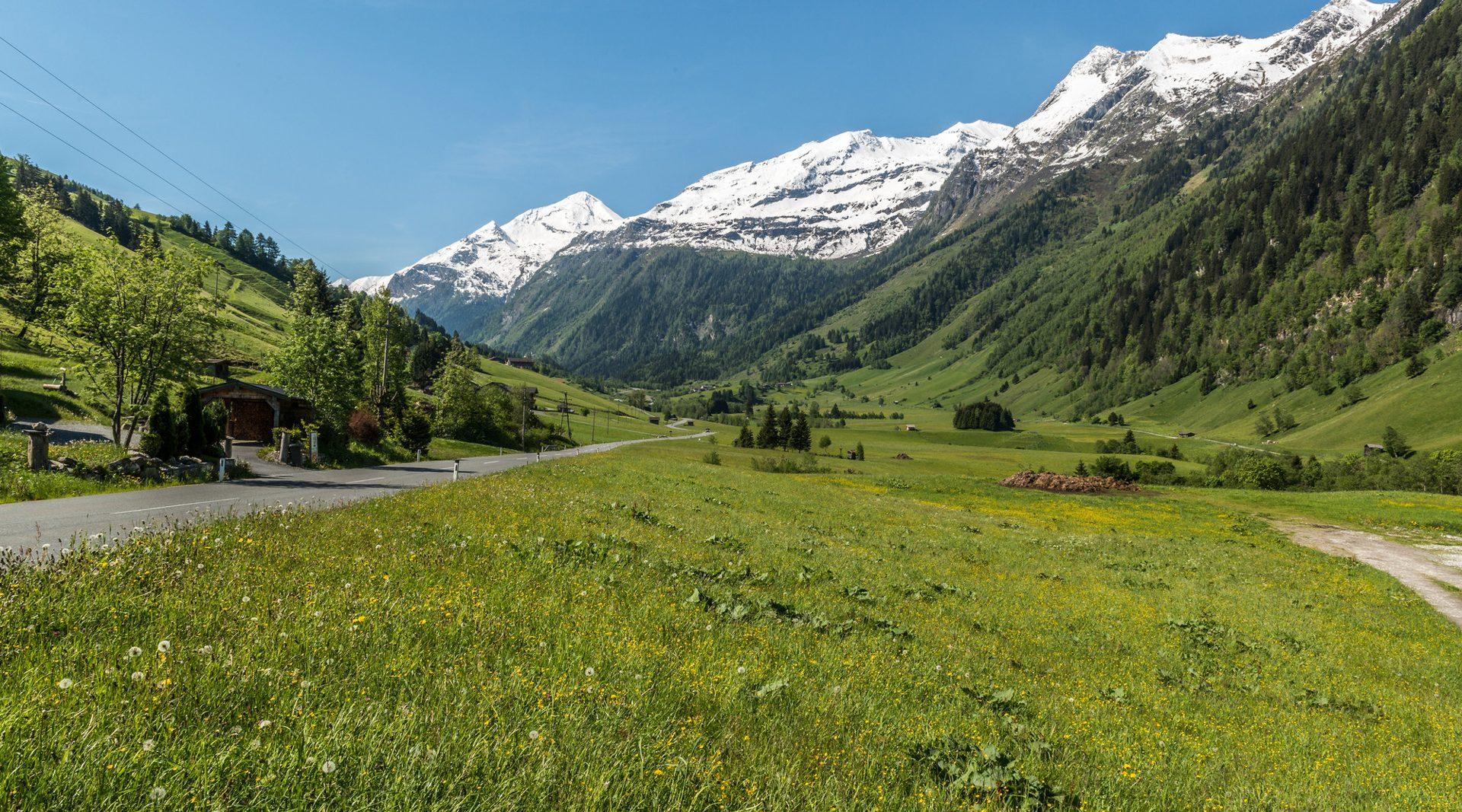 Raurisertal mit Blick auf die schneebedeckten Berggipfel im Hintergrund