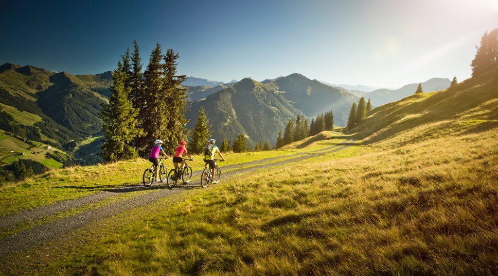 Mountainbiker in schöner Almlandschaft.