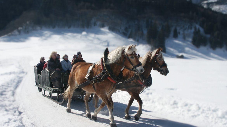 © TVB Piesendorf Niedernsill, Harry Liebmann Winterliche Pferdeschlittenfahrt