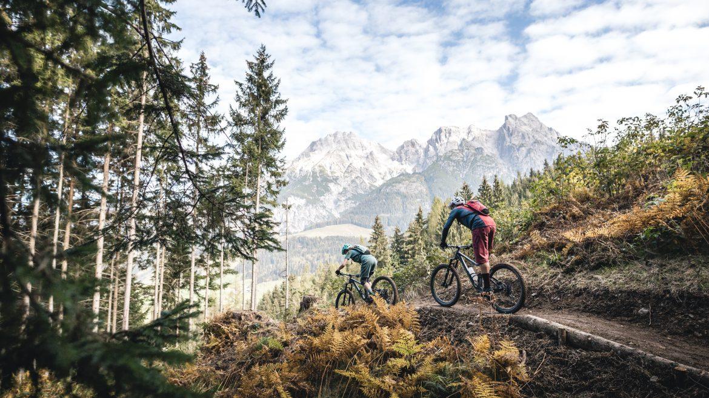 Neuer Trail Richtung Schwarzleobach; ©Saalfelden Leogang M Ablinger - Schwarzleotrail in Leogang