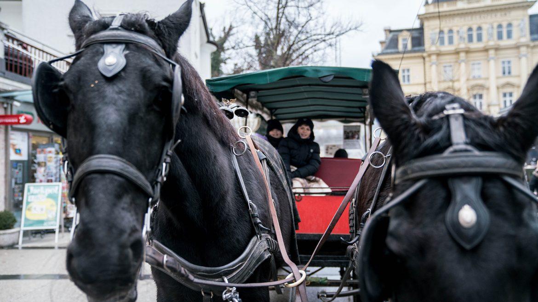 Carriage ride through Bad Ischl