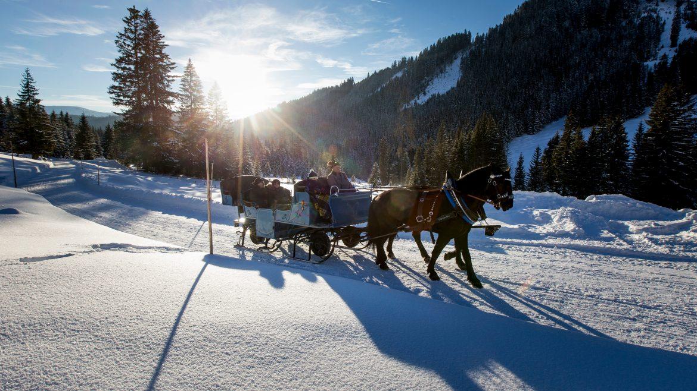 Romantikus lovas szánkózás filzmoos-i Hofalmen-hez, Pferdeschlittenfahrt