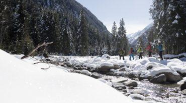 Schneeschuhwandern, Wildkogel