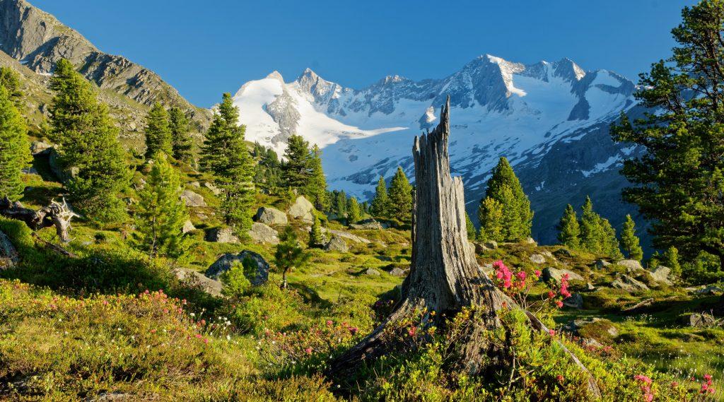 SalzburgerLand bij elk weertype: zomer en winter