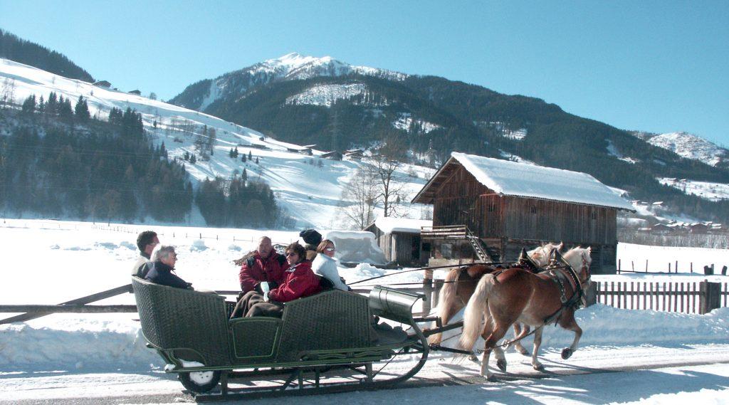 Een paardenslee in een winters landschap