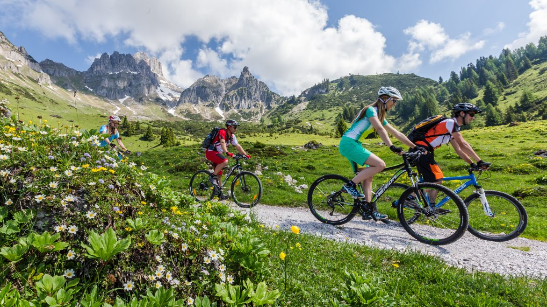 Mountainbikers op een alm