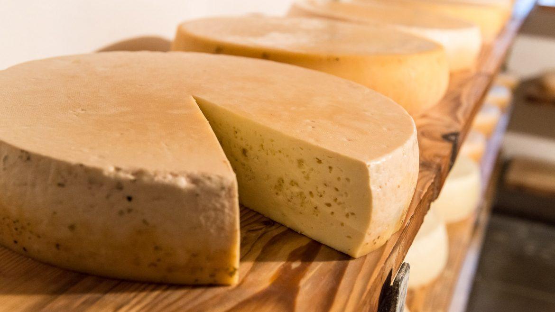 Bochny żółtego sera ułożone rzędem na regale